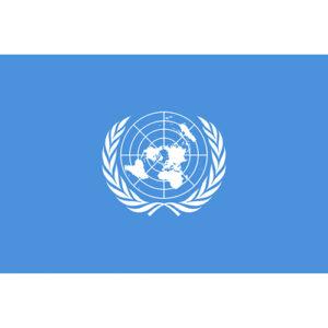 聯合國會旗