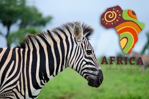 非洲國家國旗