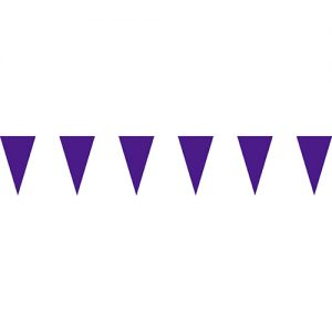 紫色三角串旗;彩色三角串旗